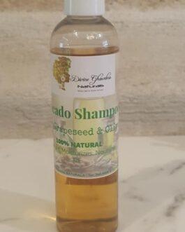 Avocado Shampoo w/Grapeseed & Olive