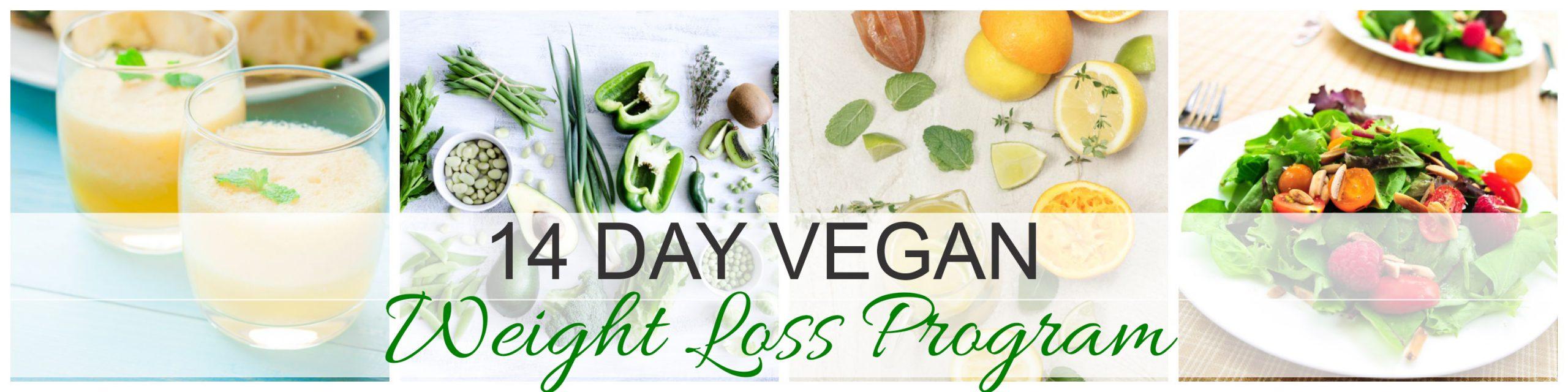 Vegan Weight Loss – 14-Day Shred Transformation Program