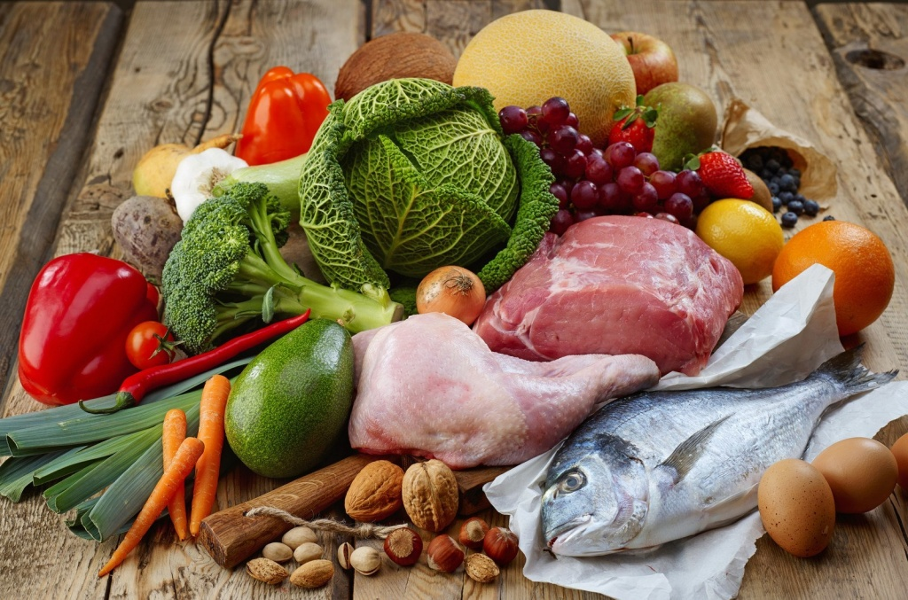 The Paleo diet as a therapeutic tool